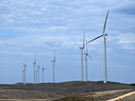 codrington-windfarm